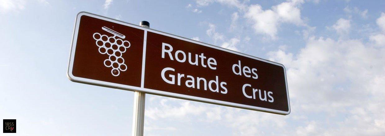 Grand Cru Classé - Médoc & Sauternes